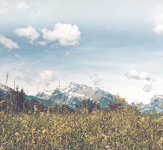 Landschaft mit Bergen und Wiese