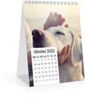 Calendar Tischkalender Quadrat 2022 page 11 preview
