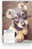 Calendar Wandkalender Quadrat 2022 page 4 preview