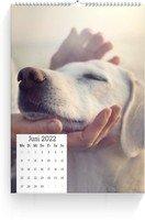 Calendar Wandkalender Quadrat 2022 page 7 preview