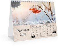 Calendar Monats-Tischkalender Tintenklecks 2022 page 13 preview