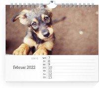 Calendar Wochen-Wandkalender Blanko Notizen 2022 page 6 preview
