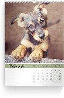 Calendar Wandkalender Farbenspiel 2022 page 3 preview