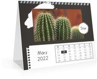 Calendar Monats-Tischkalender Trendig 2022 page 4 preview