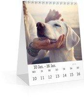 Calendar Tischkalender Blanko 2022 page 4 preview