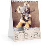 Calendar Wochen-Tischkalender Tintenklecks 2022 page 7 preview