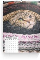 Calendar Wandkalender Quadrat 2022 page 11 preview