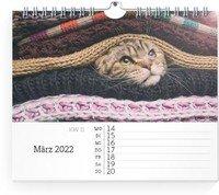 Calendar Wochen-Wandkalender Blanko Notizen 2022 page 11 preview